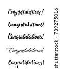 congratulations lettering  | Shutterstock .eps vector #739275016