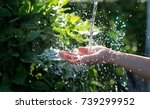 water pouring in woman hand on... | Shutterstock . vector #739299952