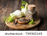 fennel bulb and seeds  | Shutterstock . vector #739302145