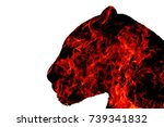 panther from the fire on a... | Shutterstock . vector #739341832