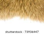 Fur Texture Background