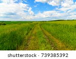 a country road among green... | Shutterstock . vector #739385392