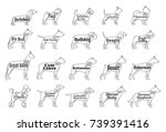 Vector Dogs Icons Collection...