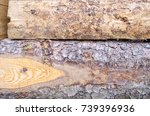 Small photo of Tree bark texture on firewood. Wood bark background.