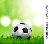 a soccer football on a fresh green background - stock photo