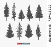 coniferous tree isolated... | Shutterstock .eps vector #739415122