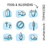 set of different food allergy... | Shutterstock .eps vector #739441582
