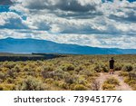 hiking taos gorge  taos new... | Shutterstock . vector #739451776