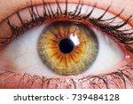 human eye medical detail | Shutterstock . vector #739484128