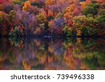 colorful canadian fall... | Shutterstock . vector #739496338