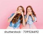 portrait of happy young mother... | Shutterstock . vector #739526692