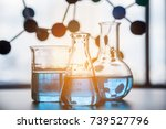 science laboratory testtube and ... | Shutterstock . vector #739527796