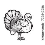 thanksgiving day turkey sketch... | Shutterstock .eps vector #739543288