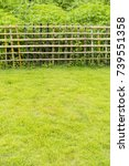 bamboo fence with grass...   Shutterstock . vector #739551358