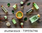 organic cosmetics with tea tree ... | Shutterstock . vector #739556746