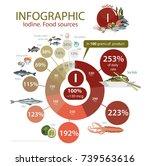 "infographics ""iodine. food... | Shutterstock .eps vector #739563616"