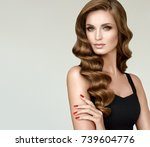 brunette  girl with long  and   ... | Shutterstock . vector #739604776