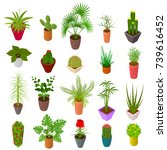 green plants in pot set icons... | Shutterstock .eps vector #739616452