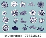 flower set | Shutterstock .eps vector #739618162