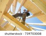 roof builders mounting... | Shutterstock . vector #739703008
