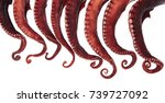 tentacles of octopus isolated... | Shutterstock . vector #739727092