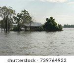 landscape of flood area. | Shutterstock . vector #739764922