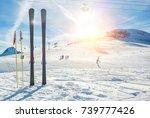panoramic view of sport resort... | Shutterstock . vector #739777426