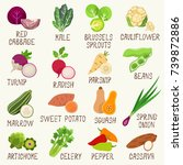 vegetables vector set | Shutterstock .eps vector #739872886