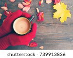 female hands in red knitted... | Shutterstock . vector #739913836