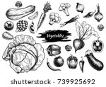 set of vegetables. hand drawn.... | Shutterstock .eps vector #739925692
