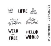 vector lettering set with hand... | Shutterstock .eps vector #739926736