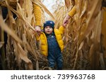Child Walking Though The Corn...
