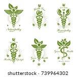 set of caduceus vector... | Shutterstock .eps vector #739964302