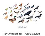 collection of city  and wild... | Shutterstock .eps vector #739983205
