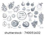 fruits set. hand drawn vector.... | Shutterstock .eps vector #740051632