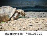 giant african spurred tortoise  ... | Shutterstock . vector #740108722