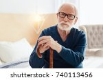attentive pensioner posing on... | Shutterstock . vector #740113456
