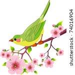 Cute Bird Sitting On Blossom...
