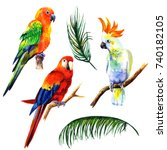 Stock photo set of birds parrots watercolor illustration in white background 740182105