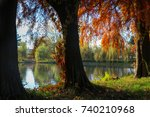 trees view of the lake... | Shutterstock . vector #740210968