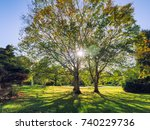 early autumn countryside... | Shutterstock . vector #740229736