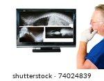 "Animal Doctor ""Veterinary"" - stock photo"
