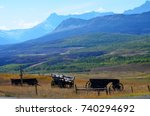 old wooden wagons over looking... | Shutterstock . vector #740294692