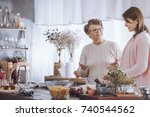 happy grandmother talking with... | Shutterstock . vector #740544562