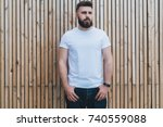 summer day. front view. young... | Shutterstock . vector #740559088