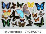 Stock photo set butterfly isolated on a white background 740592742