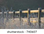 frosty morning | Shutterstock . vector #740607