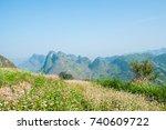 field of buckwheat flowers at... | Shutterstock . vector #740609722