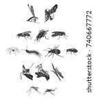 a set of gray insects. flying... | Shutterstock .eps vector #740667772