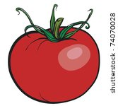 juicy red tomato. a fresh... | Shutterstock .eps vector #74070028